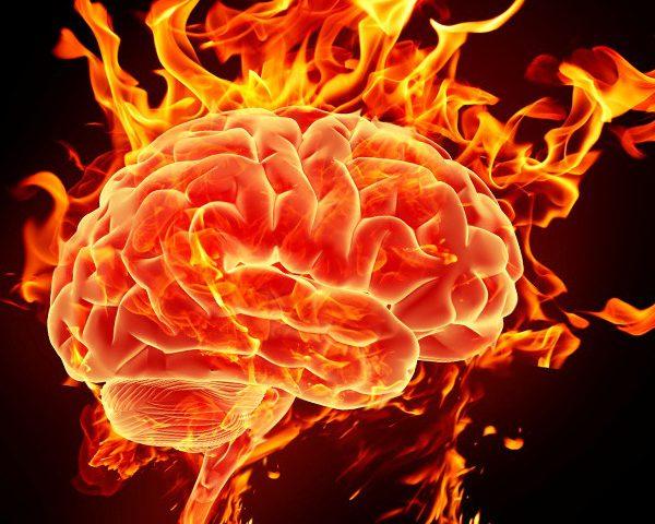 brain on ruth s nutrition